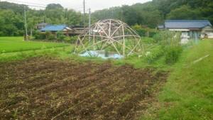 マリポ農場